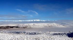 Summit of Mt John